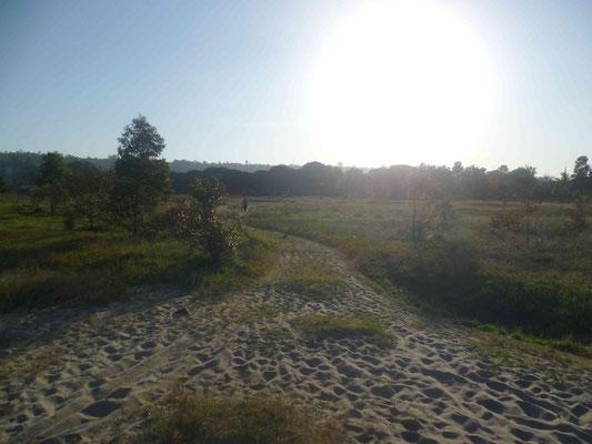Endlich angekommen in Bukoba - hier zu sehen der Weg am See entlang...