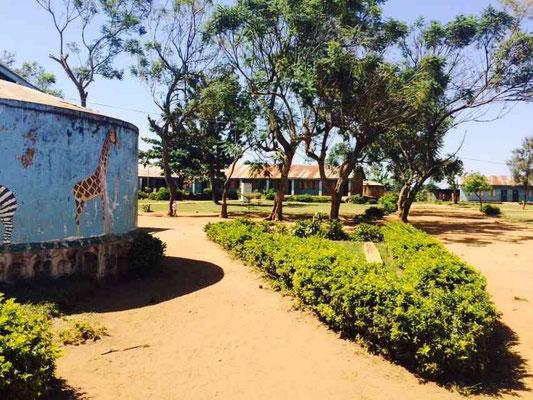 Mugeza Mseto