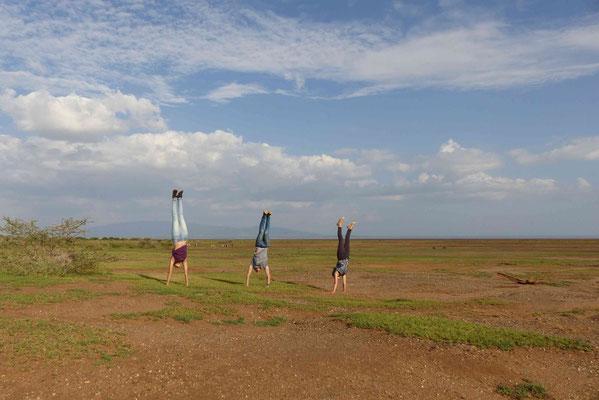 Zebras und drei Wazungu, die versuchen einen Handstand zu machen
