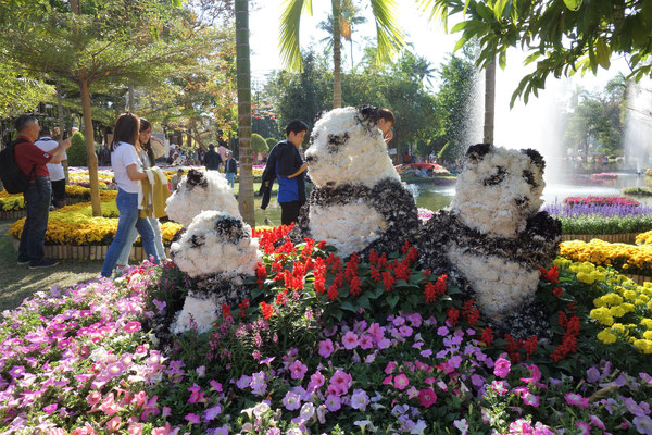 Drei Pandabären aus Blumen