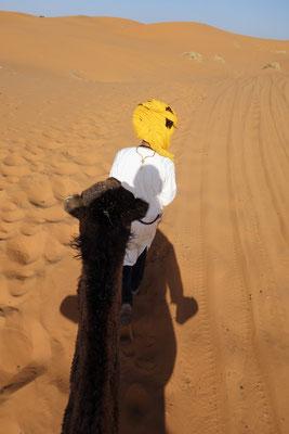 Der Wüstenführer