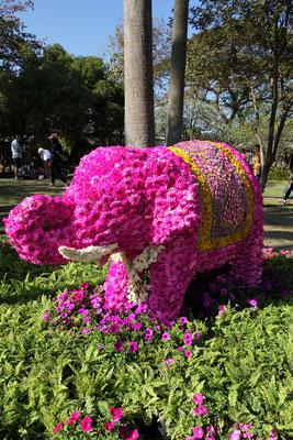 Ein pinker Elefant aus Blumen
