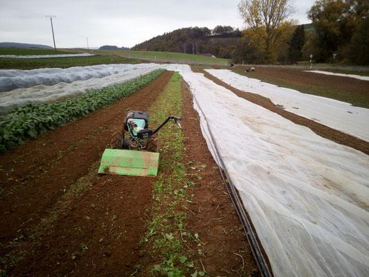 danach Bodenbearbeitung