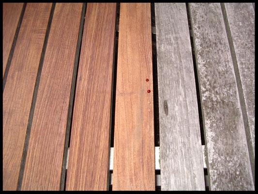 Nanoprotect Holz Refit - Gibt vergrautem Holz ohne Schleifen seine ursprüngliche Farbe wieder