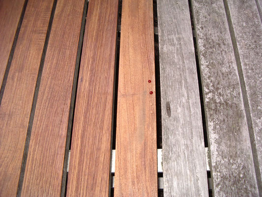 Nanoprotect Holz System – Reinigung, Entgrauung, Witterungsschutz und Imprägnierung für alle Hölzer