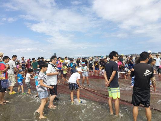 9月23日地曳網漁体験! 中羽サイズのイワシがたくさん!