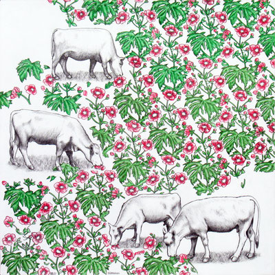 Campo Florido. Dibujo a lápiz sobre papel opalina. 35 cm X 35 cm. 2012.