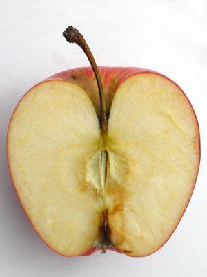 Fruto. Fotografía digital. 40 cm X 30 cm. 2009
