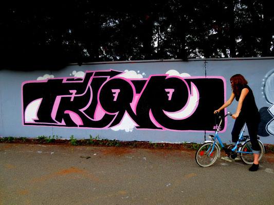 TRINE, Darmstadt 2013
