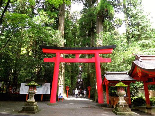 箱根神社 第四鳥居
