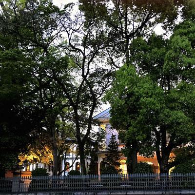 龍谷大学のライトアップ