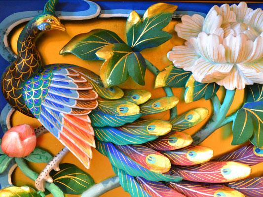 無量寺の孔雀
