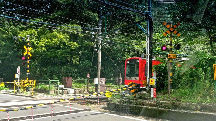 箱根登山鉄道 サン・モリッツ号