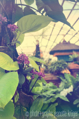 Gärten 1