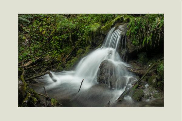 Wasser in Bewegung