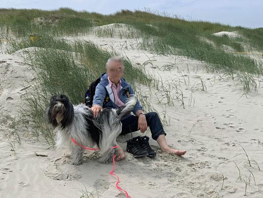 Am nächsten Tag waren wir wieder am Strand.