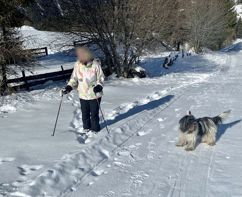 Das hat sie nun getan. Hoffentlich fährt sie im nächsten Jahr wieder Ski!!!