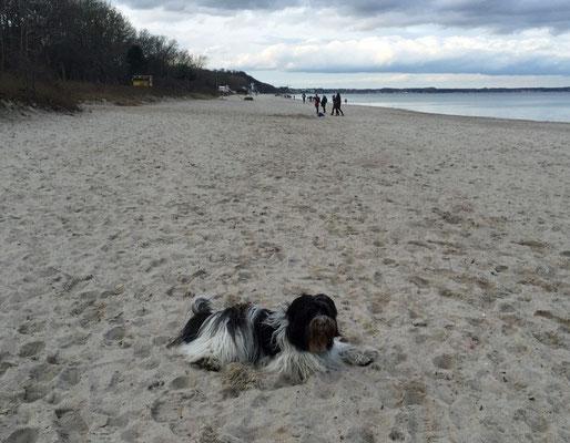 So sieht der Strand in Timmendorf aus.
