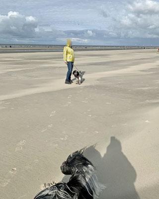 Wieder zum Strand ...