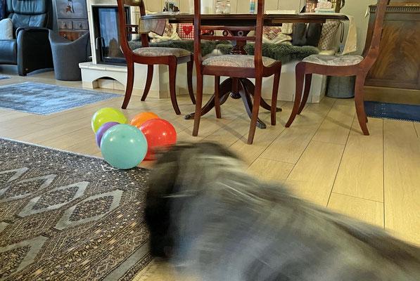 Die gruseligen Luftballons sind noch immer in unserem Wohnzimmer.