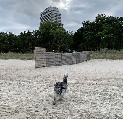 ... in Timmendorfer Strand.