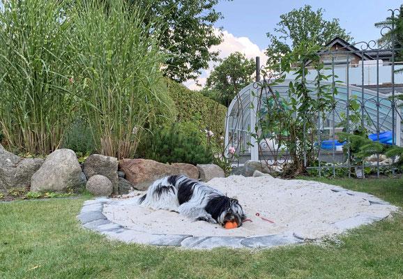 Zur Zeit immer noch mein liebster Platz: die Sandkiste