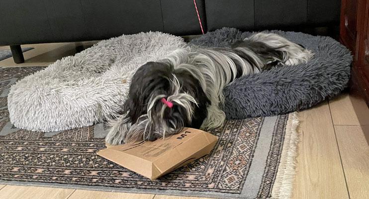 Heute kommt ein Päckchen ..., das ist doch wohl für mich?!