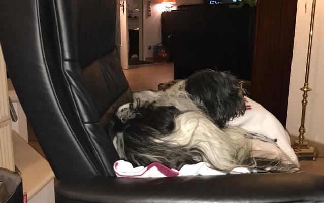Dafür liege ich jetzt auf ihrem Sessel, ganz stressless.