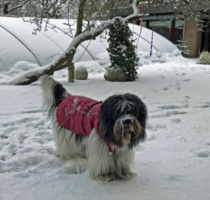 Auch hier trage ich meinen Mantel, aber nur wenn es schneit.