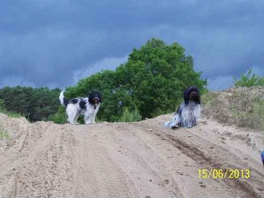 ... und haben auf diesen tollen Sandbergen herumgetobt.