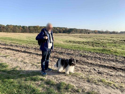 Ich bin zum ersten Mal in der Lüneburger Heide und kenne mich noch nicht aus. Wir gehen so vor uns hin.
