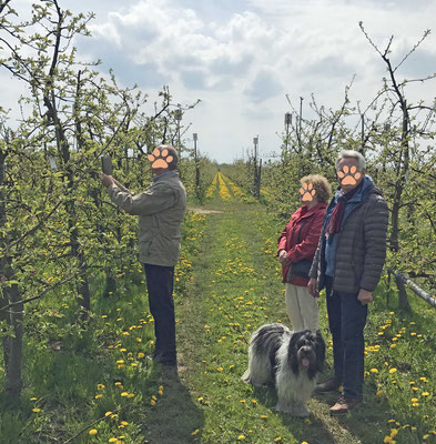 Wir waren bei Monikas Apfelbaum. Ich habe meine Freundinnen Willma und Amara gesucht, aber sie waren, genaus so wie Mama, nicht da.