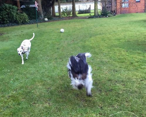 Wir vertragen uns jetzt gut und haben etwas im Garten gespielt