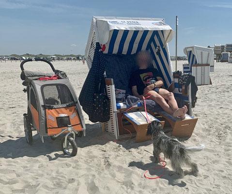 Dann waren wir wieder am Strand. ...