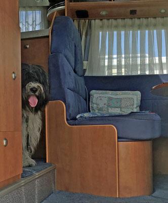 Henry hatte ein ganzes Haus dabei, das heisst Wohnmobil.