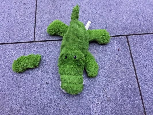 Ich habe mein Krokodil, das Henry mir geschenkt hat, kaputt geliebt. Ich frag mal Frauchen ... die macht das schon!