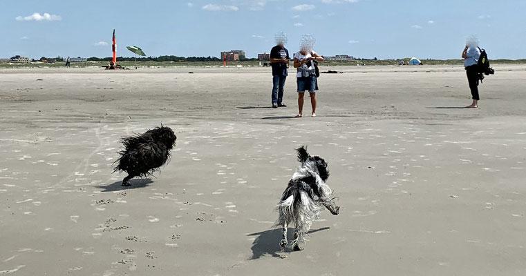 ... am Strand getobt und ...