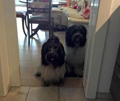 Wir warten an der Küchentür auf unser Essen.