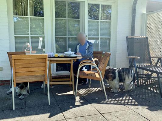 Frühstück gibt es in diesem Jahr auf der Terrasse.