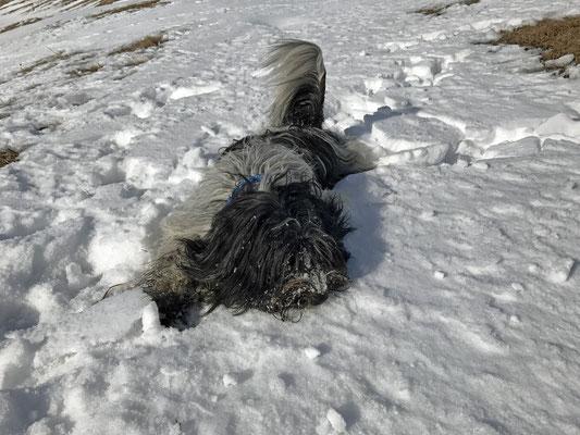 Mein Schnee ...