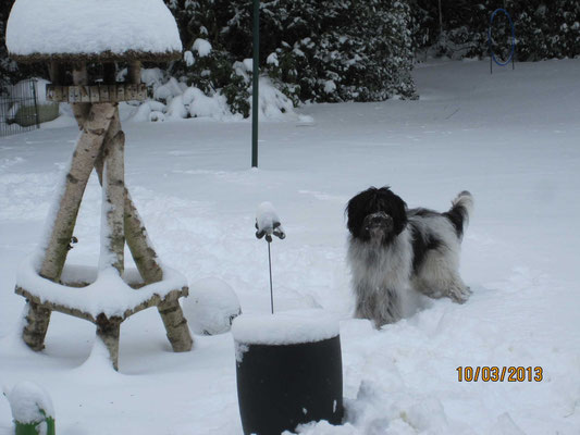 Als wir zu Hause abfahren wollten hatte es noch einmal kräftig geschneit.