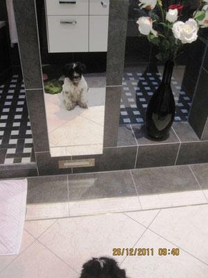 Ich vermute schon lange, daß im Bad noch ein Hund ist; heute habe ich ihn gesehen!