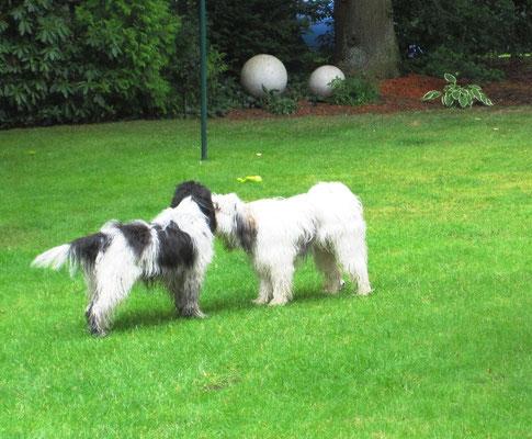 Wir haben uns dann endlich hier in meinem Garten getroffen ...