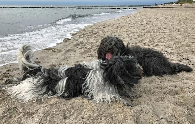 Dann im Sand ...