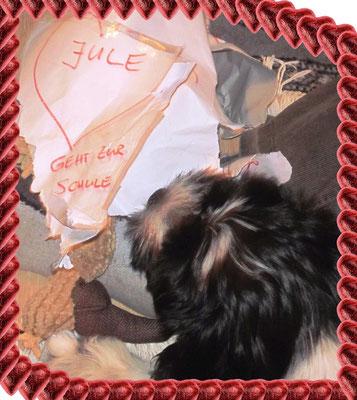 Das war meine Schultüte. Ein Stück von meinem Geschenk, einem Geier aus Stoff, guckt schon raus.