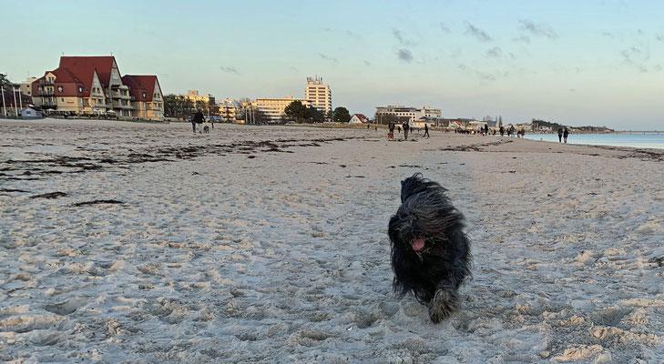 Am Strand zu laufen ist schön, ....