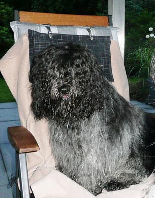 ...Stühlen auf der Terrasse.