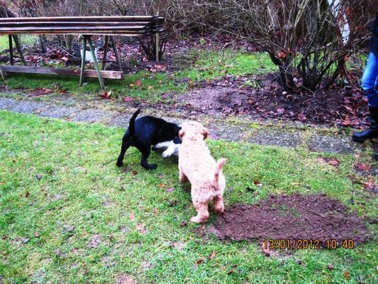 Das sind Nellie und Paul, von mir gucken nur 2 Beine raus.