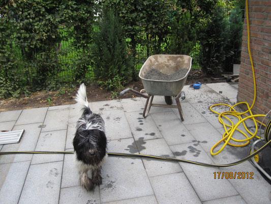 ... die Gartenbauer beim Verlegen von Terrassenplatten.