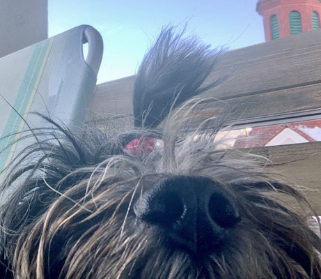 Selfie, hihi